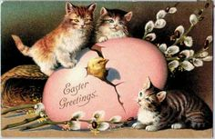 Free Printable Easter Greeting Cards: Vintage Cats and Kittens - Vintage Holiday Crafts Easter Cats, Happy Easter, Vintage Easter, Vintage Holiday, Vintage Cards, Vintage Postcards, Vintage Images, Creepy Vintage, Easter Greeting Cards