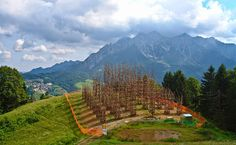ALLPE Medio Ambiente Blog Medioambiente.org : Una catedral de árboles vivos en Orobie