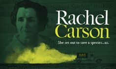 She set out to save a species… us. American Experience: Rachel Carson  http://www.pbs.org/video/2365934437/