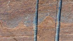 ❝ El fósil más antiguo del mundo encontrado en Groenlandia ❞ ↪ Puedes verlo en: www.proZesa.com
