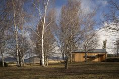 Dalefield Guest House designed by team Green Architects. Architects, House Design, Green, Barns, Handmade, Animals, Hand Made, Animales, Animaux