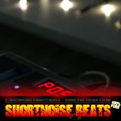 31 year old producer from germany, focusing on hot beats / instrumentals for rappers, hiphop artists and singers. http://www.shortnoise.com