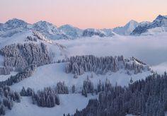 Abend Abendlicht Berge Bergwald Bergwetter Hochgebirge Kälte Landschaft Licht Nebel Rigi Schnee Winter