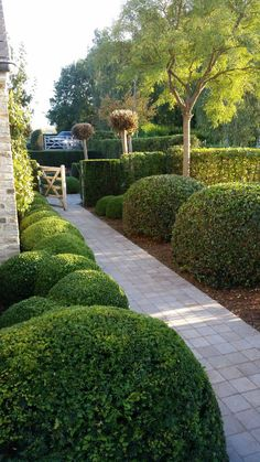 NV ONS Tuinarchitectuur Boxwood Garden, Topiary Garden, Lush Garden, Dream Garden, Formal Gardens, Outdoor Gardens, Patio Design, Garden Design, Cotswold House