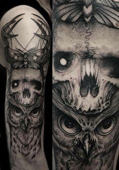 owl , skull