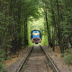 Love Tunnel #lovetunnel #ukrainetravel #ukraine_recommends #tour #travel #travelukraine #loveukraine #loveukraine💙💛