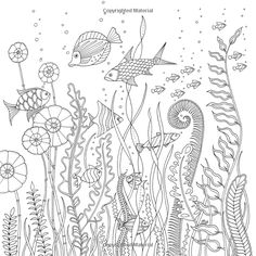 Johanna Basford Coloring Book Adult Ocean Lost Sketch Page