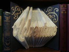 Adventure folded book