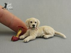 """Autumn Gold"" ~ Dollhouse Miniature Golden Retriever Puppy w/ strappy red pump. Sculpture of clay & fiber."