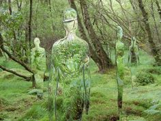 Scottish sculptor Rob Mulholland's Vestige installation consists of six human silhouettes (three men and three women) made of mirror perspex immersed in a  woodland walk.