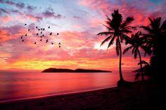 """島全体が""""免税""""の楽園。自然溢れる大人のリゾート「ランカウイ島」"""