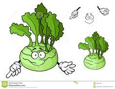 cartoon-smiling-ripe-kohlrabi-vegetable-cartoon-cabbage-character-crisp-juicy-stem-bright-green-leaves-natural-53061047.jpg (1300×1009)
