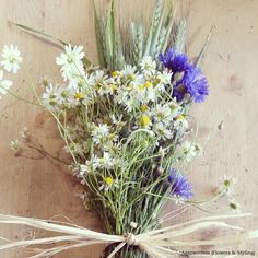cornflowers, ears, daisies,