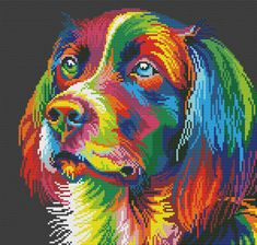 Kralen hond