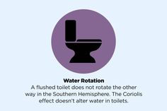 The truth about water rotation in toilets