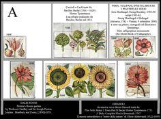 Dettaglio articolo 10638 - botanical tiles - stand Recuperando #recuperando - available on recuperando.com