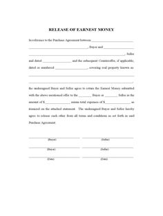 cash receipt form template for word receipt forms templates