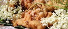 Aprovechando que los Saúcos están en todo su esplendor, y que sus delicadas flores son toda una delicia culinaria, hemos elaborado unas Flores de Saúco rebozadas. Igual en nuestro país no es tan común preparar Flores de Saúco fritas o rebozadas, sin en cambio en otros, como en Alemania (Geback…