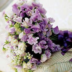 Bouquet de pois de senteur 40 euros