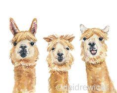 Llama Watercolor - 8x10 PRINT, Llama Painting, Animal WAtercolour, Funny Llama, Nursery Art by WaterInMyPaint on Etsy https://www.etsy.com/ca/listing/245935010/llama-watercolor-8x10-print-llama