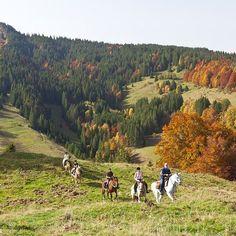 On part en balade à cheval pour découvrir les paysages du Jura en automne   La Pesse, Jura, France   Photo Studio Vision/Jura Tourisme   #JuraTourisme