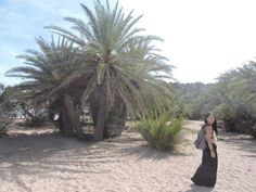 10reasonsSitiaTstories #Sitia #Crete