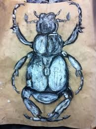 Image result for oil pastel insects