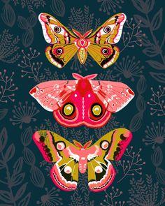 Lepidoptery No. 4 by Andrea Lauren Art Print by Andrea Lauren Design | Society6