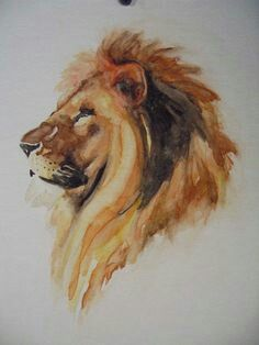 A watercolor LION? screw all those watercolor flower tattoos! Art Watercolor, Watercolor Animals, Watercolor Lion Tattoo, Lion Art, Animal Paintings, Painting & Drawing, Lion Painting, Art Inspo, Lions
