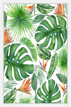 Description: - Top quality Giclee print on high resolution Archive Paper - Artwork by Melanie Clarke - Professionally framed and mounted - High quality durable non-warping frame - Arrives ready to han Plant Painting, Painting Frames, Painting Prints, Tropical Art, Tropical Leaves, Tropical Paintings, Watercolor Leaves, Watercolor Paintings, Leaf Drawing