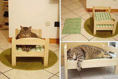 Un p'tit lit pour chat.