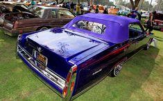 Old Cars Cadillac Lowrider   Azalea Classic Car Show Lifestyle Cadillac Lowrider 01
