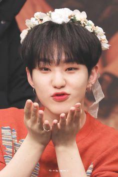Wonwoo, Seungkwan, Jeonghan, Seventeen Album, Seventeen Memes, Hoshi Seventeen, Kpop, Babe, Adore U