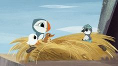puffin rock - Google Search