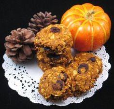 Dog Cookie Recipes - Pumpkin & Carob Oatmeal Dog Treat Recipes