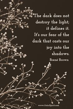 Darkness & Light ~ is within us All ~ through this knowledge ~ much can be learned about ~ 'Ourselves'...Lightbeingmessages.com