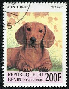 BENIN - 1.998 Un sello impreso en Benin muestra Dachshund.