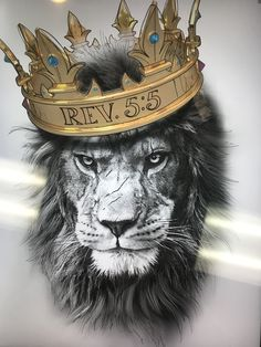 - - You are in the right place about animal wallpaper android Here we offer you the most beautiful p Female Lion Tattoo, Lion Head Tattoos, Lion Tattoo King, Lion Images, Lion Pictures, Tier Wallpaper, Animal Wallpaper, Lion Tattoo Sleeves, Lion Photography