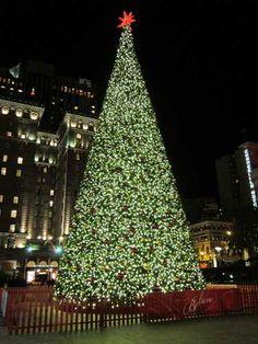 San Francisco Macys Great Tree