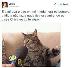 11 desabafos que este gatíneo disparou pela internet