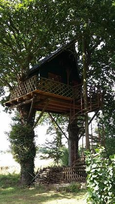 hut perched at 6 meters (tree house at 6 meters)