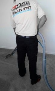 Carpet Cleaning Solutions On Pinterest Upholstery