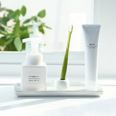 Výsledek obrázku pro toothbrush storage