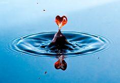 HeartAbove-Water.jpg (480×333)