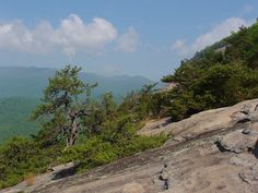 From the Lower Cliffs of Looking Glass Rock in Pisgah National Forest (hung out here with camp in '01 and '02)