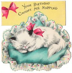 vintage Hallmark birthday card - napping kitty
