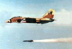 Iranian Air Force F-14 Tomcat.