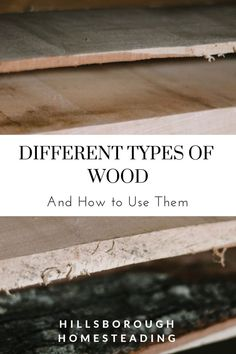 Different Types of Wood and How to Use Them Knowing the individual characteristics of each type of w Woodworking Classes, Popular Woodworking, Woodworking Projects Diy, Woodworking Videos, Woodworking Plans, Diy Projects, Woodworking Magazines, Woodworking Equipment, Woodworking Joints