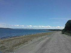 un camino en Chiloe