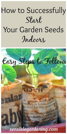 How to Successfully Start your Garden Seeds Indoors. If you want to get a head start on the gardening season consider starting some of your flower and vegetable plants from seed. by jeanine Planting Vegetables, Organic Vegetables, Growing Vegetables, Planting Potatoes, Growing Tomatoes, Growing Plants, Veggies, Starting A Garden, Seed Starting